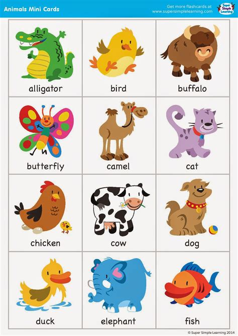printable flash cards of animals english time