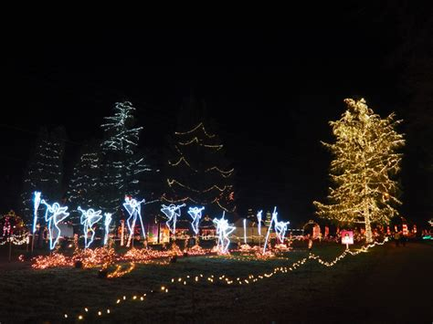 the lights of christmas in warm beach wa mellzah