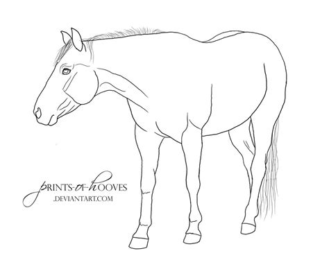 coloring pages of quarter horses quarter horse coloring pages freecoloring4u com