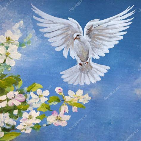 imagenes de palomas blancas gratis una paloma blanca volando gratis foto de stock