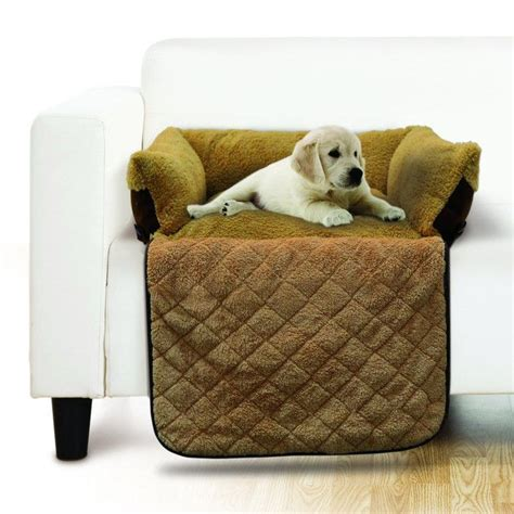 comfy couch dog bed comfy couch ped bed pet beds dog and cat dog beds and