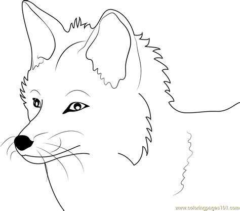 Stone Fox Coloring Page | free fox face template coloring pages