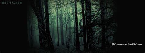 cover photos creepy forest cover photos