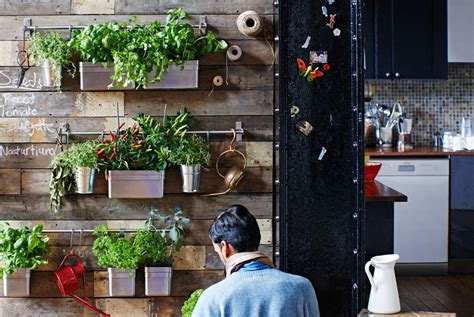 wall herb garden ikea indoor garden ideas