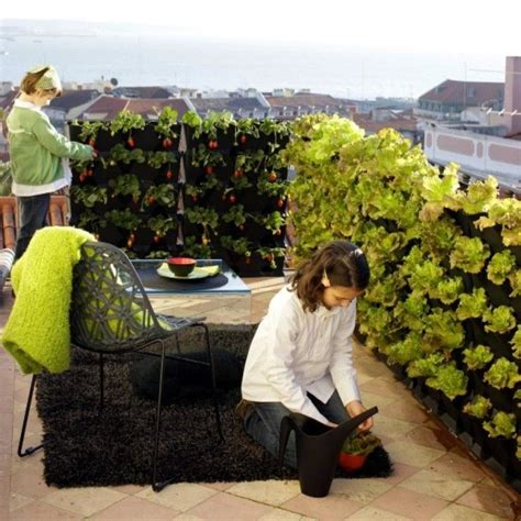 winter balcony garden 29 best images about creating privacy walls on