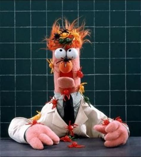 Outside Idiot Inside intel inside idiot outside the muppet show systems