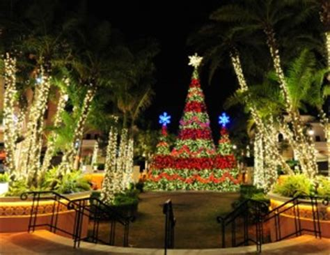 gulf zoo lights free and cheap things to do in miami with during the