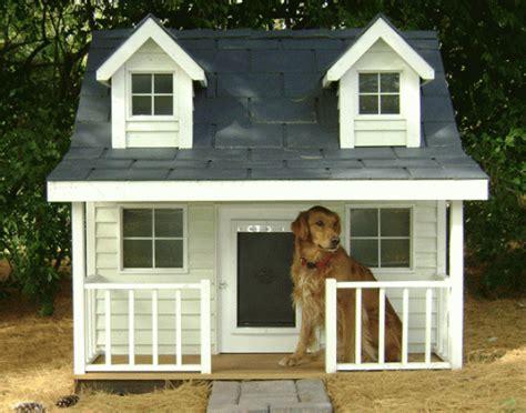 las casas para perros originales y creativas