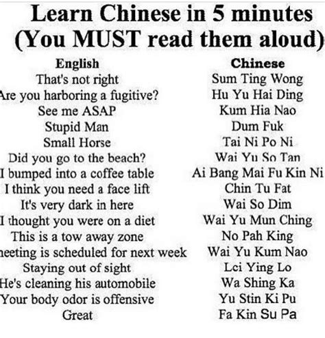 Sum Ting Wong Meme - 25 best memes about learn chinese in 5 minutes learn