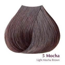 mocha hair color hair color mocha brown hairs