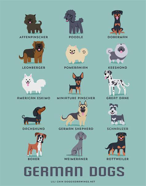 Mini Encyclopedia Dogs Explore The Wonderful World Of Dogs Ency Min dogs of the world illustration series by lili chin milk