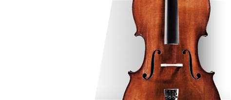Jargar Cello G String jargar strings the quality of tone for your instrument