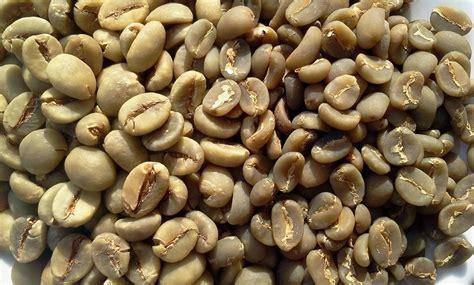 Sindoro Green Coffee Arabica 11 useful facts about java 171 food hacks wonderhowto