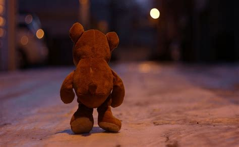 lonely girl at night miss you face photos of sad teddy bear upset and sitting