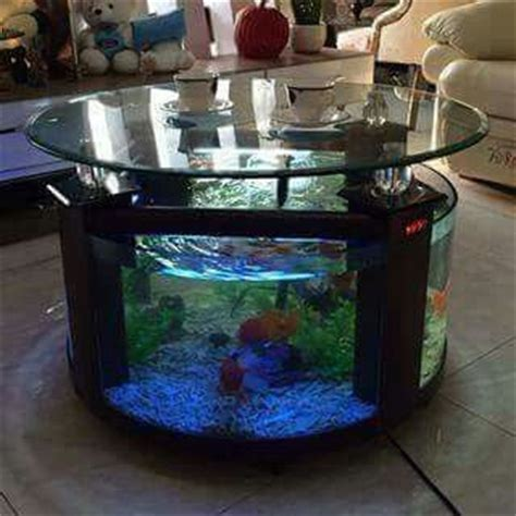 fish bowl coffee table 25 best ideas about fish tank coffee table on