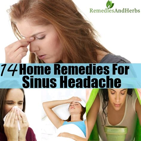 14 home remedies for sinus headache diy home remedies