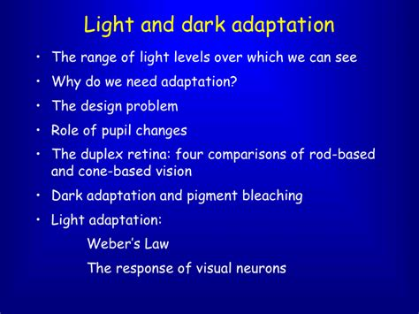 Light And by Powerpoint Presentation Light And Adaptation