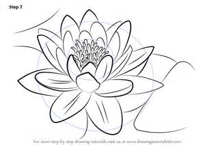 learn draw water lily lily step step drawing tutorials
