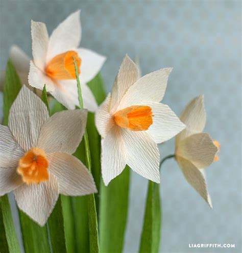How To Make Paper Daffodils - make your own crepe paper daffodils lia griffith