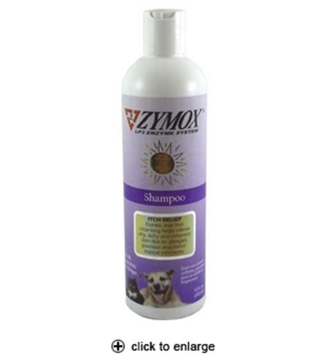 zymox for dogs zymox shoo for dogs cats 12oz