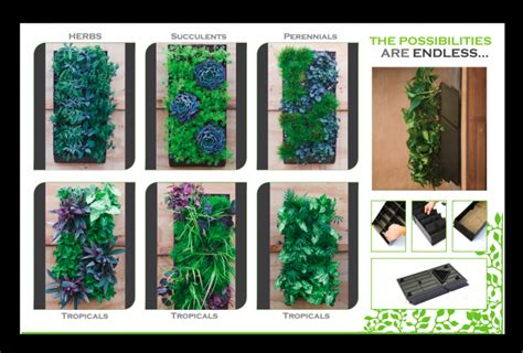 Vertical Garden Panel Sc Origin Living Wall Panel
