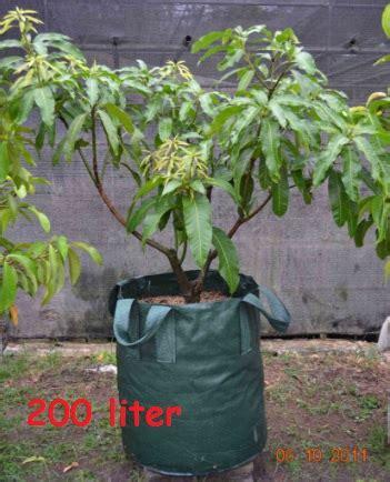 Planterbag 35 Liter Hijau planter bag hijau 200 liter jual tanaman hias