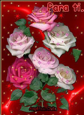 imagenes mil rosas para ti gifs hermosos flores encontradas en la web