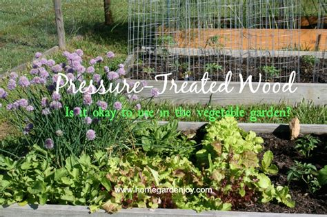 treated lumber vegetable garden can you use pressure treated wood in a vegetable garden