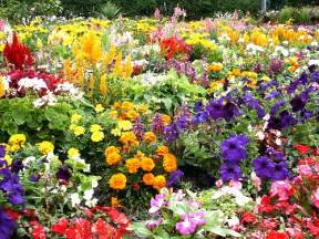 Flower Garden Images Flower Garden Pictures Pictures Of Beautiful Flower Gardens