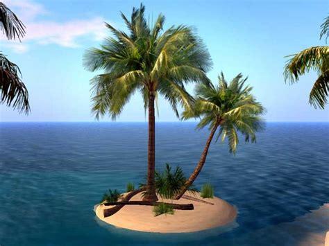 second marketplace palm tree island small island