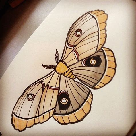 neo trad butterfly tattoo moth traditional tattoo design tattoo pinterest