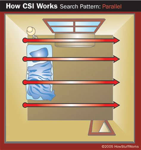 scene search patterns forensic science and criminology at the crime scene finding the evidence how crime scene