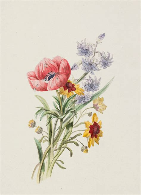 study of wild flowers painting by english