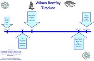 Snowflake Bentley Worksheets Poem Graphic Organizer