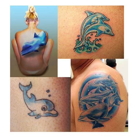 tattoo care exercise 20 most beautiful dolphin tattoo designs to show your