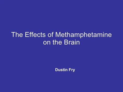 on the brain exploring the science of social intelligence with austen books the effects of methhetamine on the brain