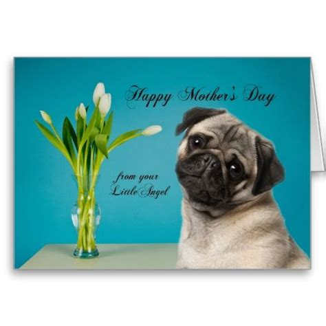 pug day pug s day card mothers day greeting cards pugs pug