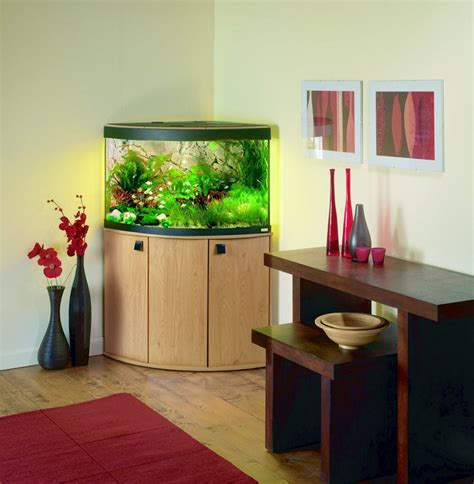Small Home Tank Small Home Tank 28 Images Small Fish Tank Designs