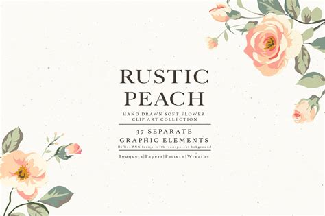 flower collection rustic peach illustrations creative