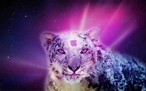 wallpaper leopard mac os os x snow leopard wallpaper hd