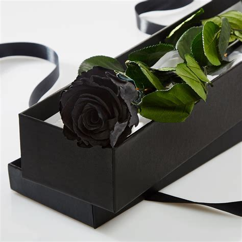 in a single black in a silk lined gift box petals roses