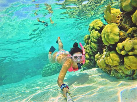 for snorkeling belize snorkeling belize adventure san pedro