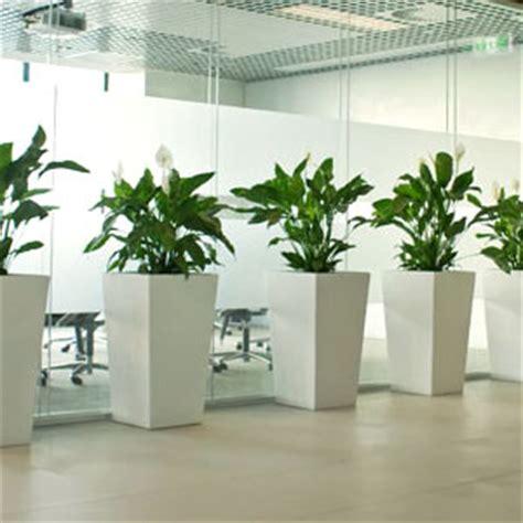 indoor plant design indoor plant design wildwood outdoor living