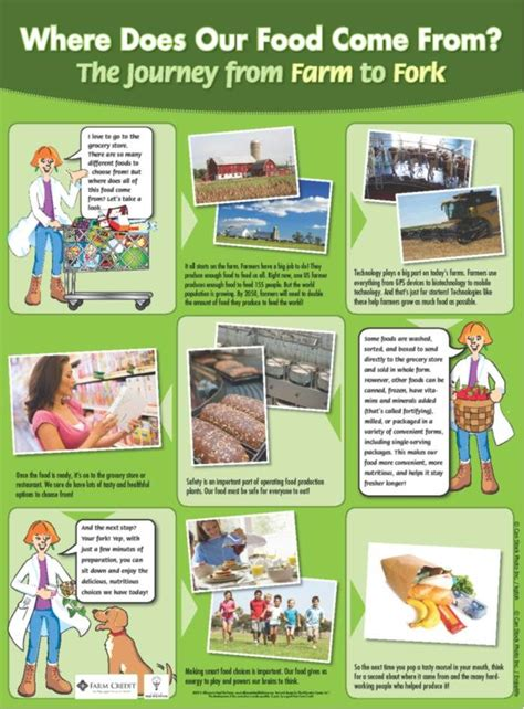 36 X 36 Table Farm To Fork Activities Poster Food Finder Pinterest