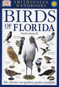 Backyard Discovery Baird Field Guide To Florida Birds Backyard Birds On Loan