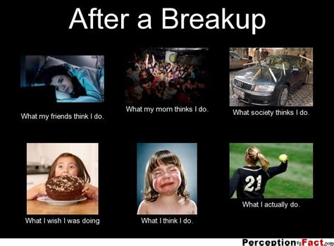 Breaking Up Meme - after a breakup what people think i do what i really