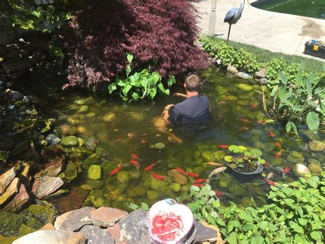 Aquascape Nj by Nj Certified Aquascape Pond Water Feature Contractor