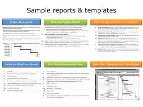 Human Resource Report Template pmp communication amp human resource