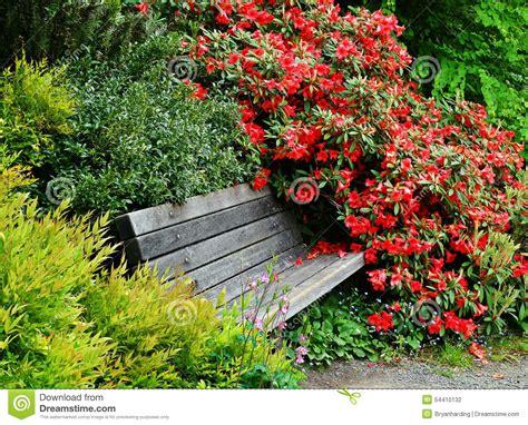 japanese garden bench flower bushes stock photo image