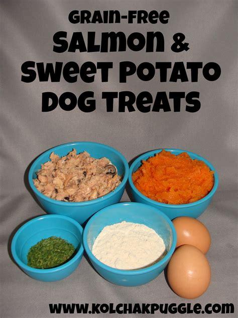 sweet potato treats recipe tasty tuesday sweet potato salmon bites treat recipe kol s notes